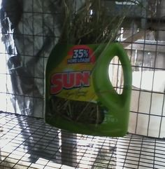 An old laundry detergent bottle.  Cut off the top and cut sections out of the lower front.  Attach the back to the rabbit cage with zip ties.  Easy free hay feeder for the rabbits.