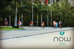One of our favorite activities at Now Jade is our bike tour to Puerto Morelos!