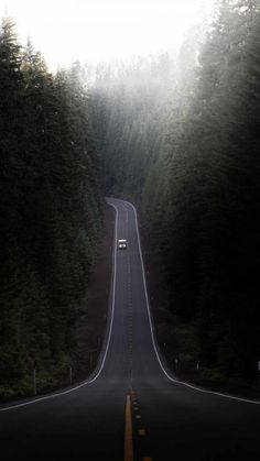Forest Road Nature - iPhone Wallpapers