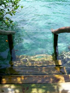 Funny pictures about Stepping into crystal clear water. Oh, and cool pics about Stepping into crystal clear water. Also, Stepping into crystal clear water. The Places Youll Go, Places To See, Crystal Clear Water, Am Meer, Belle Photo, The Great Outdoors, Beautiful Places, Beautiful Stairs, Beautiful Dream