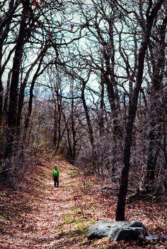 Elliot in the Woods