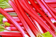 Our guide on Growing Rhubarb shares the different rhubarb varieties, when and where to plant it depending on your zone, and much much more. Red Rhubarb, Rhubarb Plants, Fruit Plants, Air Plants, Rhubarb Bread Pudding, Bread Puddings, Kids Cooking Activities, Growing Rhubarb, Gardens