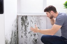 Are you experiencing mold problems? Fun Guy Inspection is here to help you! Contact us today. #FunGuyInspection #MoldExpert #MoldTestingLosAngeles #moldsremoval Wall Molding, Indoor Air Quality, Men Looks, Stock Photos, Guys, Mold Removal, Image, Products, Cover Pages