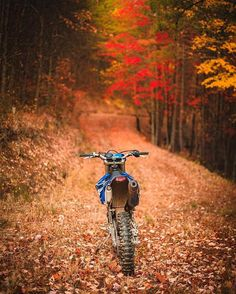 The thrill of riding your dirtbike in a pile of leaves.