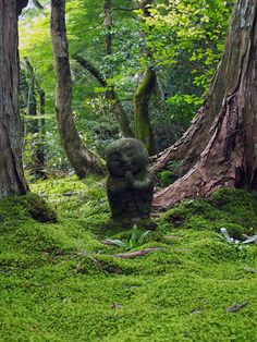 Moss garden, Sanzen-in, Kyoto, Japan Travel Japan multicityworldtravel.com ✈ www.pinterest.com/WhoLoves/Travel ✈ #travel #japan