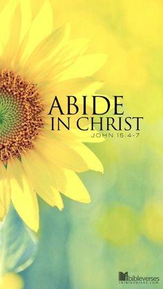 John 15:4-7