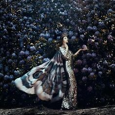 Bella kotak creates meticulously composed fantasy photography that looks plucked from a storybook. Fantasy Photography, Fine Art Photography, Portrait Photography, Photography Women, Photography Ideas, Fantasy World, Fantasy Art, Bella Kotak, The Villain