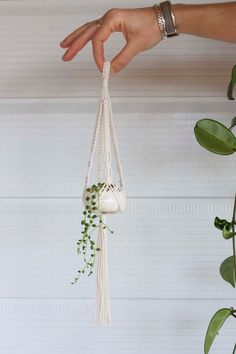 Single Mini Macrame Plant Hanger Ceramic Pot Set by KnottyBloom