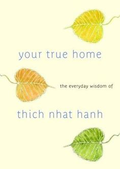 Your True Home: The Everyday Wisdom Of Thich Nhat Hanh: 365 Days Of Practical Powerful Teachings From The Beloved Zen Teacher PDF The Miracle Of Mindfulness, Mindfulness Books, Mindfulness Practice, Daily Meditation, Meditation Books, Meditation Quotes, Buddhist Philosophy, True Homes, Daily Wisdom