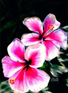 Wall Art - Hibiscuses Painting
