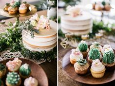 Cactus and succulent cupcakes- are you kidding me?!