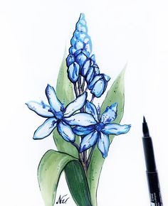 #scilla for #floralsyourway. Markers. With out a pencil sketch. I really like the result. I wanted to make this sketch on iPad. But my hubby stole it from me 😂. Oooook 🤣 I have drawn it with markers. Do you 🤔😉 share your materials with your loved ones?