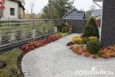Ogród z lustrem - strona 250 - Forum ogrodnicze - Ogrodowisko