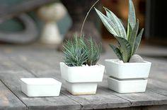 ARABIAの植木鉢 | SOURCE BLOG Plant Pots, Potted Plants, Succulents, Planters, Porcelain, Pottery, Mini, Blog, Gardening