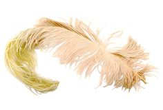 Antique Feather Hat Plume by Yourgreatfinds on Etsy, $75.00