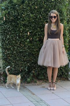 A Cat's Guide To Tulle