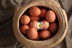 21 Things You Didn't Know About Eggs