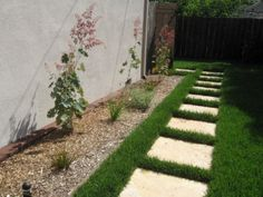 side yard ideas (with fuller plants)... grass and stepping stones instead of cement