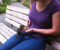 This chipmunk came right up on my lap to get peanuts