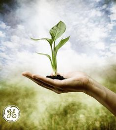 The environment is in your hands.