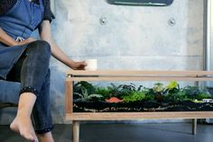 Make for Camille: Awesome Terrarium Table (Detailed build instructions @ Instructables)