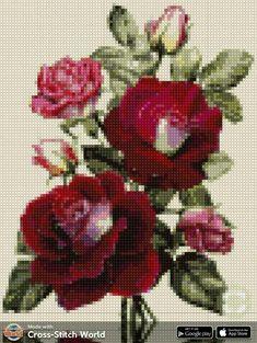 Cross Stitch Art, Cross Stitch Flowers, Cross Stitch Patterns, Needlepoint, Needlework, Embroidery Designs, Projects To Try, Beaded Bracelets, Knitting