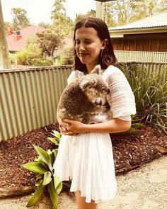 Millie Bobby Brown took a break from her busy schedule to spend some time admiring the wildlife as she posed with a Koala in adorable snaps from Brisbane, Australia, on Saturday. Bobby Brown Stranger Things, Eleven Stranger Things, Stranger Things Netflix, Millie Bobby Brown, Bobbi Brown, Best Actress, Favorite Person, My Idol, Like4like