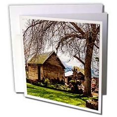 An old shed with a tree in a yard in Fillmore, Utah Greeting Card