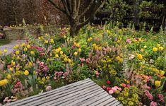 Trüb für Grün AG in Horgen, Gold Award Gewinner, Ursina Luzi, Stepping Stones, Outdoor Decor, Plants, Home Decor, Garden Planning, Stair Risers, Decoration Home, Room Decor, Plant