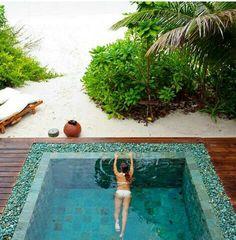 Plunge pool - oceanside