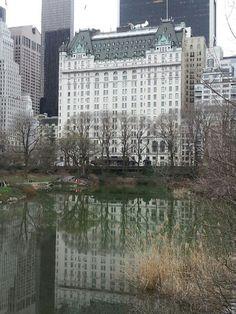 Central Park. NYC. April 2015.
