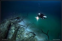 Explore an Underwater River! This hidden underwater river is in the Yucatan Peninsula and is called Cenote Angelita. It's only for more advanced divers with several hours of experience. Under The Water, Under The Ocean, Dungeons And Dragons, Dame Nature, Mayan Cities, Mystical Forest, Best Scuba Diving, Underwater Photography, Water Photography