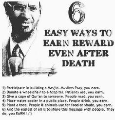 Zakir Naik advise