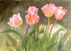 Susie Short Watercolors - Floral - Orchids - Roses- Wildflowers