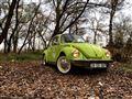 Volkswagen 1303 L Yeşil mi yeşil TosTos D