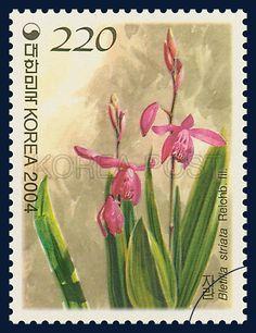 Korean Orchid Series (4th), Bletilla striata, Plants, Pink, Green, 2004 11 12, 한국의 난초 시리즈(네 번째 묶음), 2004년 11월 12일, 2420, 자란, postage 우표