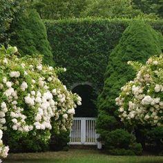 Landscape design, flower garden: The Hamptons' Gorgeous Hedges - Architectural Digest