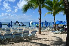 Paradise Beach - Cozumel - Reviews of Paradise Beach - TripAdvisor