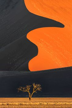 Dune and tree, Namib-Naukluft National Park, Namibia. Photograph take by Ian Plant. #OutdoorPhotographyGuide #travel #photography