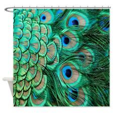 Peacock Feather Shower Curtain for