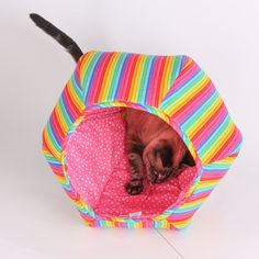 The Cat Ball Rainbow Kitty Bed for Nyan Cat