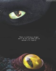 I love this quote and the Hiccup/Toothless pic.but I think this shows why Stormfly isn't the coolest looking dragon. Httyd Dragons, Dreamworks Dragons, Cute Dragons, Disney And Dreamworks, Httyd 3, Dreamworks Animation, Dragon 2, Dragon Rider, Hiccup And Toothless