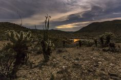 Enjoying a campfire on a partly cloudy night in the desert. Cholla and ocotillo in the foreground. Cloudy Nights, Camping Life, State Parks, Tent, Deserts, Outdoors, Sunset, Nature, Photography