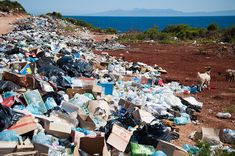 Tommy Mottola, Celine Dion, Vera Wang, Trash Removal Services, Sustainability News, Plastic Free July, France Culture, Recycled Plastic Bags, Flood Zone