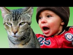 21 Pets Get Revenge On Kids
