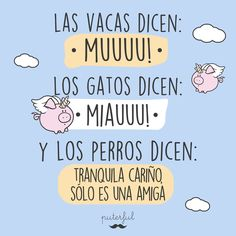 Sarcastic Quotes, Funny Quotes, Positive Phrases, Mr Wonderful, Mean People, Spanish Quotes, Some Words, Laughter, Love Quotes