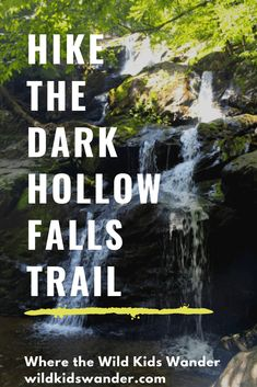 The Dark Hollow Falls Trail is one of best family-friendly waterfall hikes in Virginia. It's one of the most popular hikes in Shenandoah National Park. - Where the Wild Kids Wander - NPS Shenandoah River, Shenandoah National Park, Shenandoah Virginia, Hiking Trails With Waterfalls, Weekend Getaways With Kids, Hiking In Virginia, East Coast Road Trip, Waterfall Hikes, Family Travel