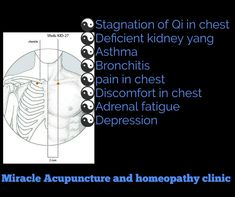 Kidney 27(shu fu) Adrenal Fatigue, Homeopathy, Asthma, Acupuncture, Clinic, Depression, Sepia Homeopathy