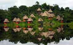 Napo Wildlife Center Ecuador   Yasuni National Park   Amazon Rainforest Lodges