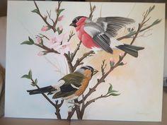 Άνοιξη - πουλιά